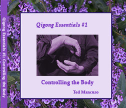 Qigong Essentials: Controlling the Body DVD @plumpub.com